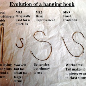 Evolution of a hanging hook